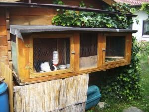 Kaninchenstall integriert im Gartenhäuschen