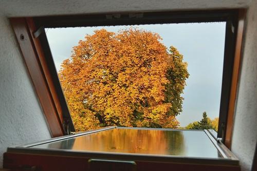 Fensterfolie als Sichtschutz