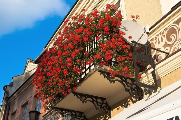 Balkon Gestalten Bodenbelag Sichtschutz Balkonpflanzen Bauen