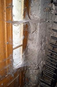 Kellersanierung bei feuchten Wänden