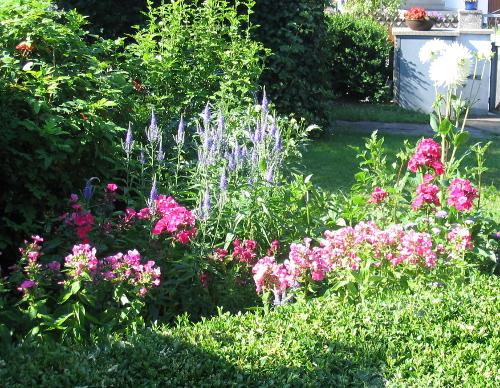Gartengestaltung – vom Garten anlegen bis zur Ernte
