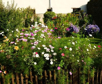 """Bild1:  """"Bauerngarten mit Holzzaun"""""""