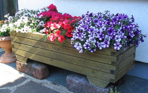 Pflanzkübel mit typischen Sommerblumen © bauen-und-gestalten.de
