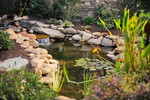 Ein schöner Gartenteich, sehr oft ein optisches Highlight. Bild: © istock.com/EricVega