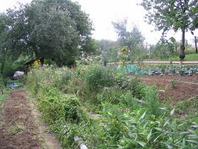 Garten-Trend 2015: Nachhaltigkeit