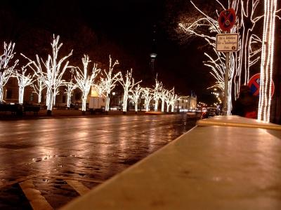 """Bild 1: """"Lichtketten - immer häufiger für Weihnachtsdekoration genutzt""""."""