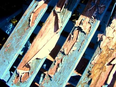 Holz richtig lackieren