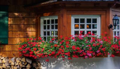 Bild 1: Wanderhütte mit Blumenschmuck