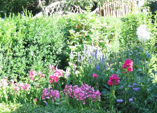 Den Garten sinnvoll planen