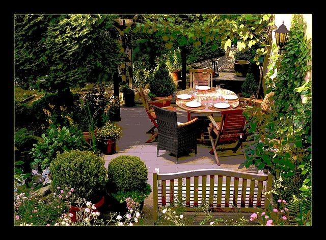 Schön und praktisch: Kübelpflanzen als Sichtschutz und Raumteiler