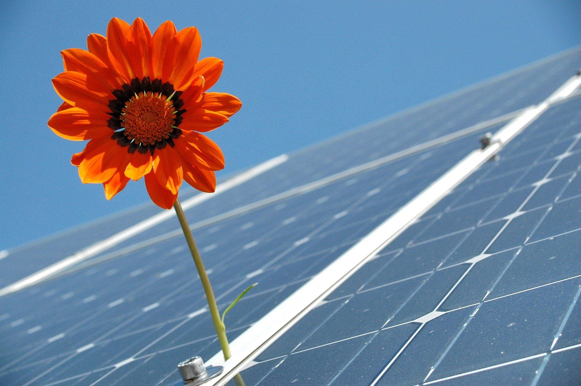 Solaranlage auf dem Gartenhaus